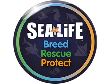Breed Rescue Protect